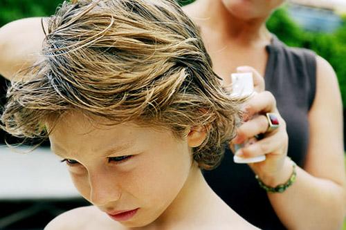 treat lice